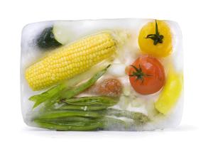 Frozen Foods Experts